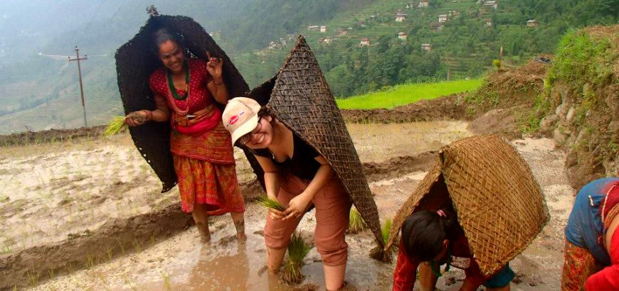 Yale student with local women in a Nepali rice field.