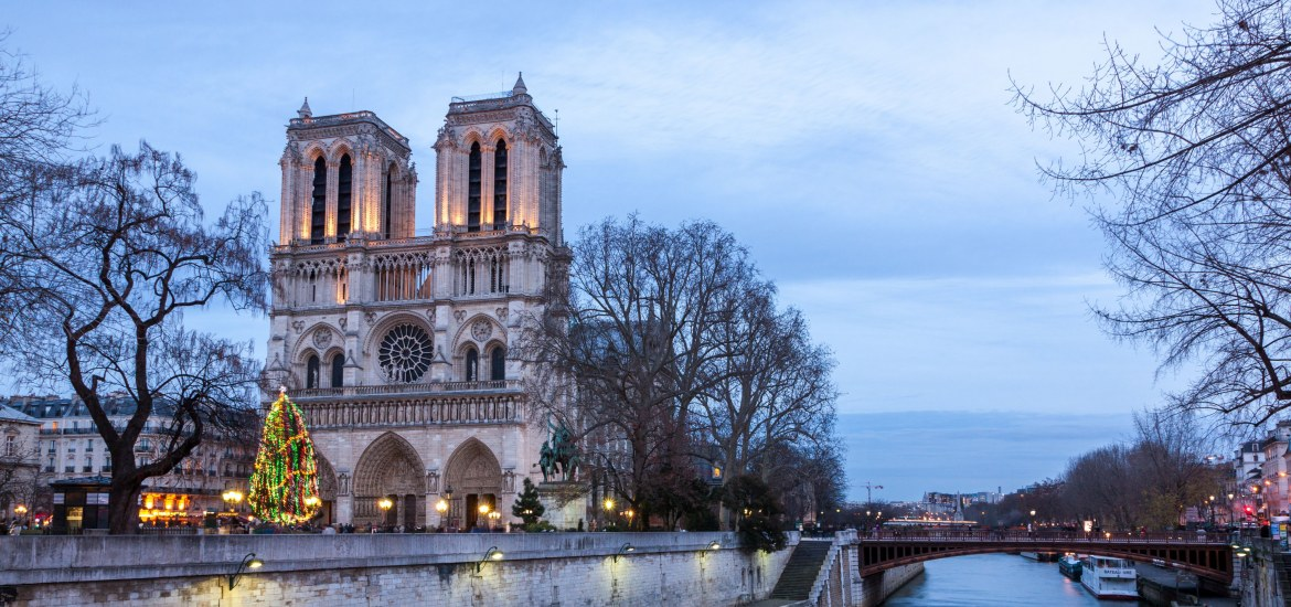 View of Notre Dame at night