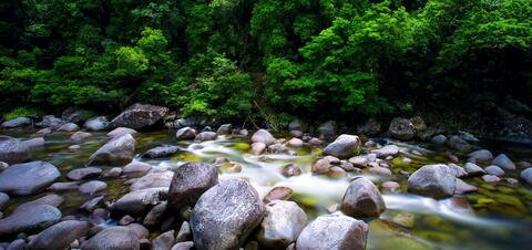 Water flowing over rocks in Mossman River in Daintree National Park